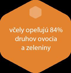 hexa3